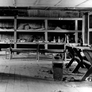 <p>On 11 April 1945, the US army liberated Buchenwald camp.</p>