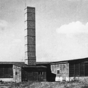 <p>On 22 July 1944, the extermination camp Majdanek was liberated by Soviet troops. </p>
