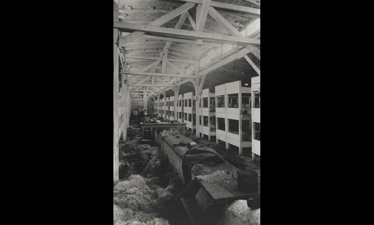 Inside one of the prisoners sleeping barracks at Auschwitz.