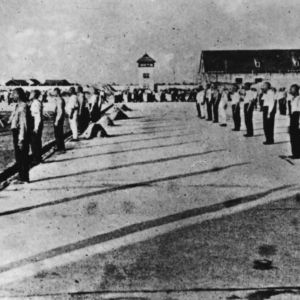 <p>On 22 March 1933, the first Nazi concentration camp was established in the town of Dachau. </p>