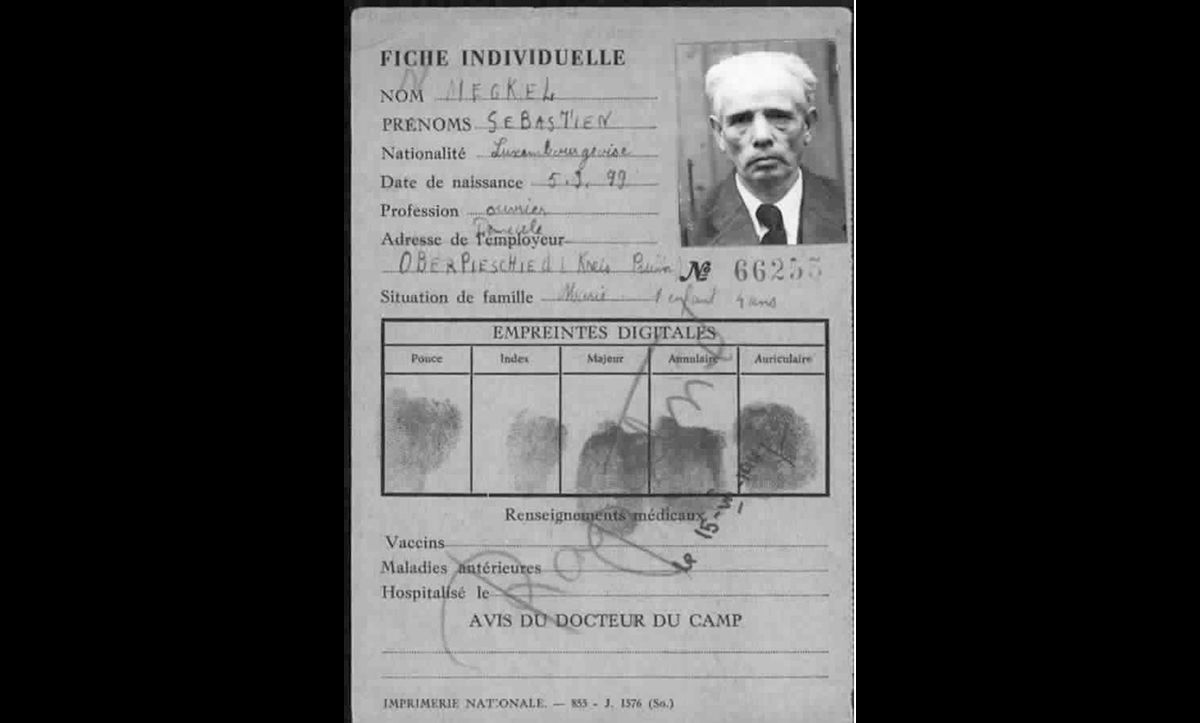 The DP registration card of Sebastian Meckel, a Jewish survivor from Luxembourg.