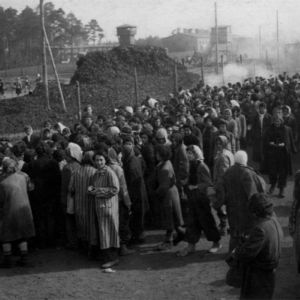 <p>On 15 April 1945, Bergen-Belsen camp was liberated by the British Army. </p>